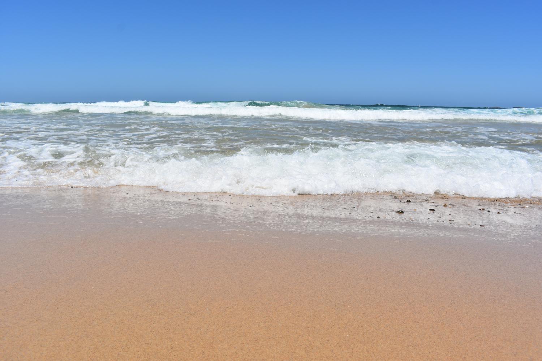 Beach Nut Press
